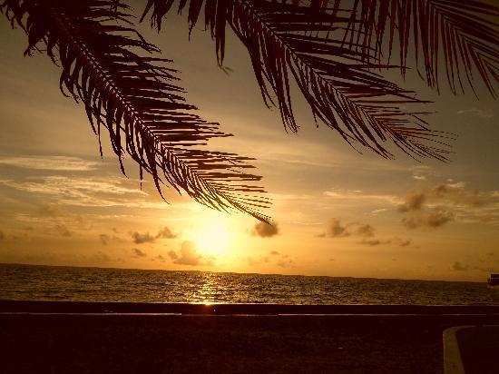 Lankanfinolhu Island: Couché de soleil depuis la marina