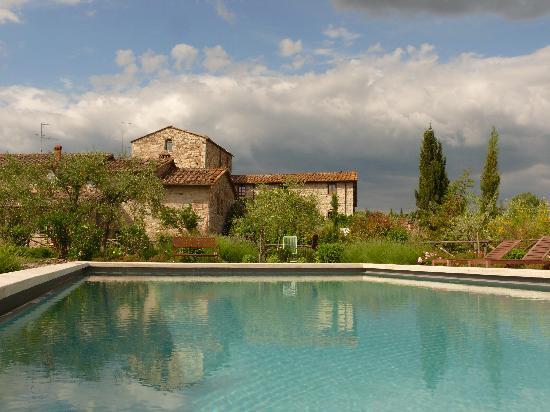 Castellare De' Noveschi: vista della piscina con sullo sfondo parte del borgo