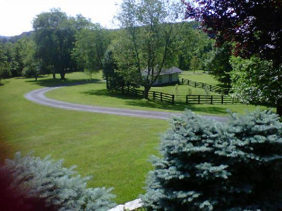 ‪‪The Welsh Hills Inn‬: View of the Paddock from the Porch of The Welsh Hills Inn - Granville Ohio Bed & Breakfast‬