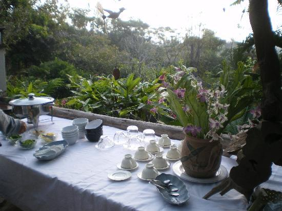 Janpha Cottage: Blick von der Frühstücksterrasse