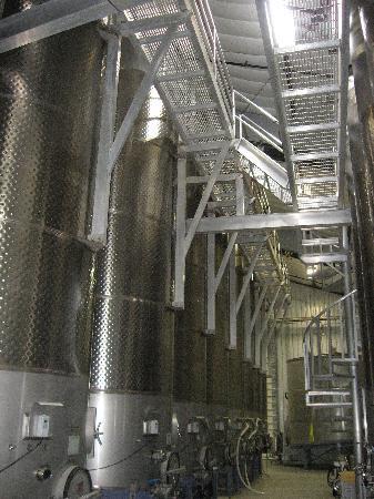 Rotta Winery: Steel Tanks
