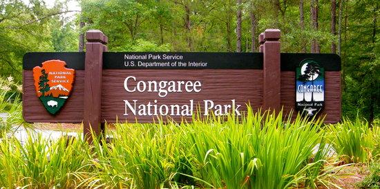 Hopkins, SC: Congaree National Park, SC