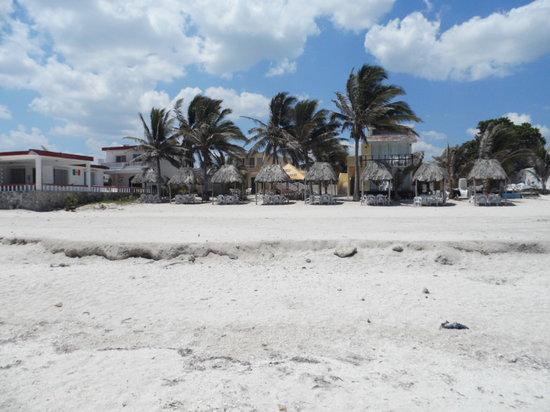 Puerto Yucalpeten, Mexico: Vista de la playa al hotel