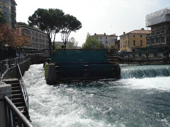 Treviso, Italia: City Center & wier