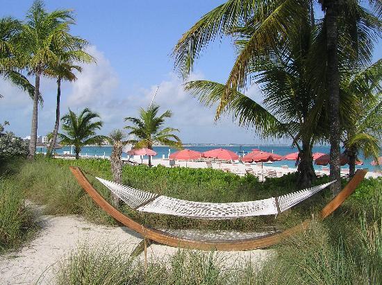 Ocean Club Cabana Bar & Grill照片