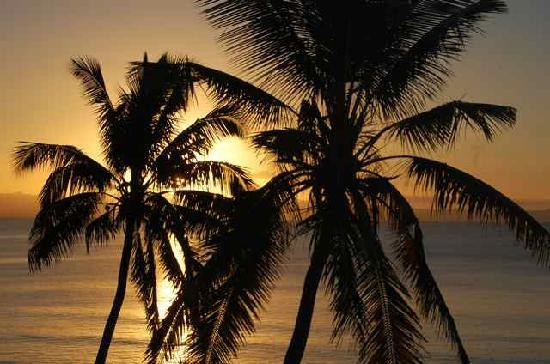 Taveuni Palms Resort: Wonderful sunsets every evening.