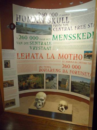 The National Museum : Informative displays