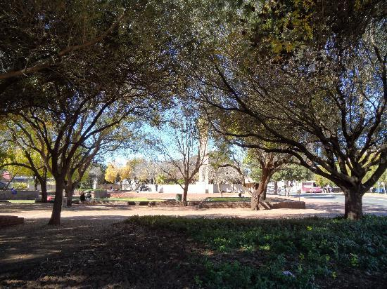 Hertzog Square: In the shade