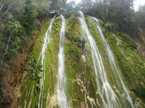 Chalet Tropical Village: Salto de Limon waterfall, by horseback