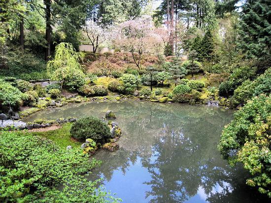 Ripple Rock Picture Of Portland Japanese Garden Portland Tripadvisor