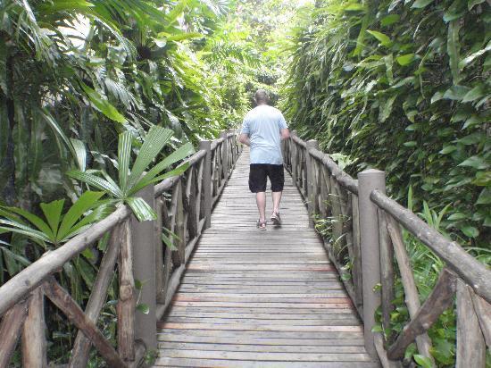 ออน เดอะ ร็อค - มารีน่า ภูเก็ต รีสอร์ท: Boardwalk to On the Rock