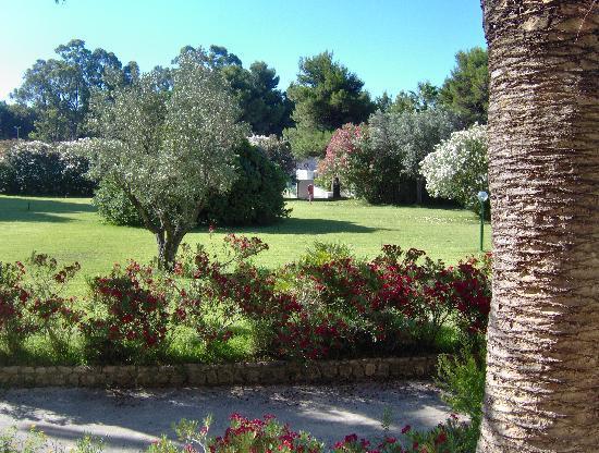Sellia Marina, Italia: Il giardino centrale visto dalla camera