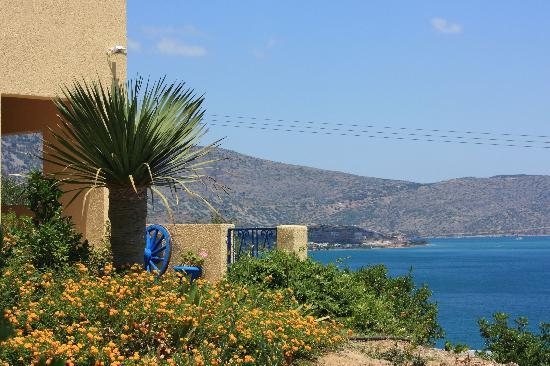 Elounda Heights Apartments and Studios: Garten
