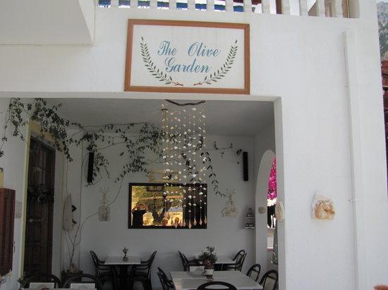 Kira Panagia, Greece: im Olive Garden