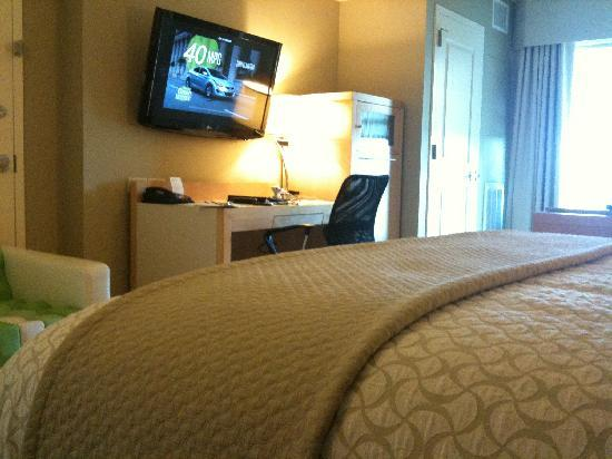 Embassy Suites by Hilton Raleigh - Durham Airport/Brier Creek: King non-suite room