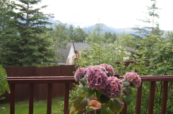 Calla House Bed & Breakfast: Beauty off the back deck