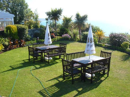 Carlton Hotel: Garden
