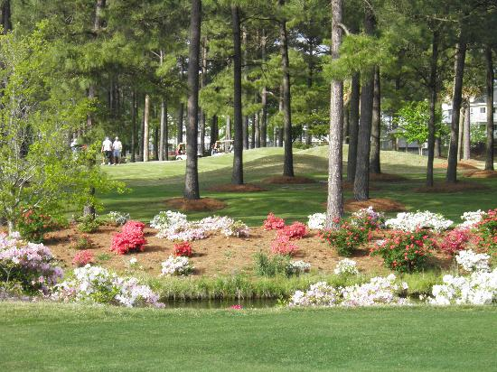 Brunswick Plantation Golf Course