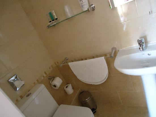 Seafield Guest House: the spotless bathroom