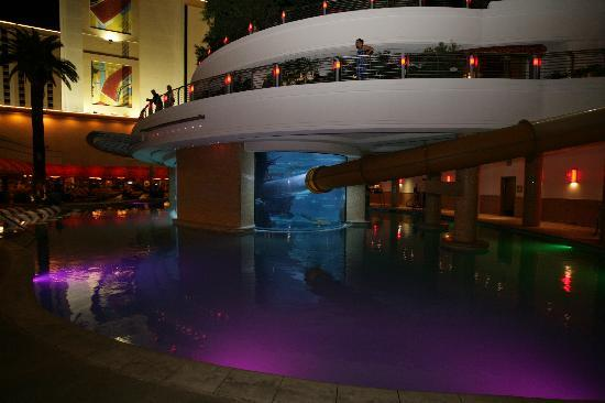 Golden Nugget Hotel: The pool and the aquarium