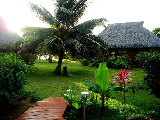 Moorea Fare Miti: The first steps into paradise