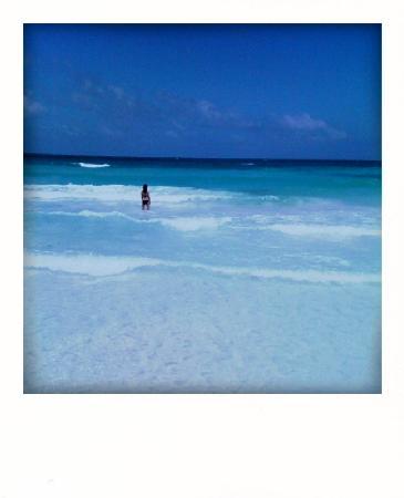 Playa Mambo: swim