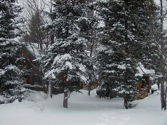 Eden Mountain Lodge: Enjoy the winter from your own hidaway in the snow