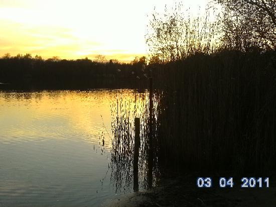 Center Parcs Het Meerdal: Schaute mit meinem Mann immer den Sonnenuntergang an während die Kinder am spielplatz spielten (