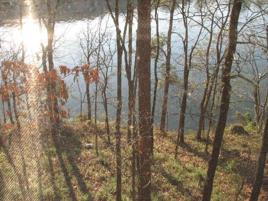 Five Points Cabins: Our view from the bedroom