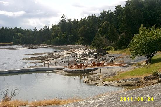 Yellow Point Lodge: More Pool with BBQ in Background - used largely in July + Aug