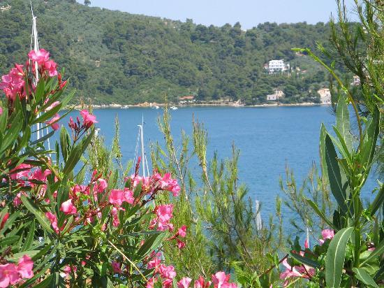 Platamon, Hellas: just Skiathos