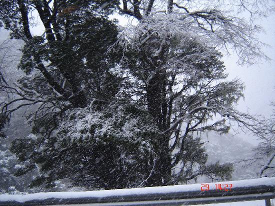Rotui Apart Hotel: nevo muchisimo 2011