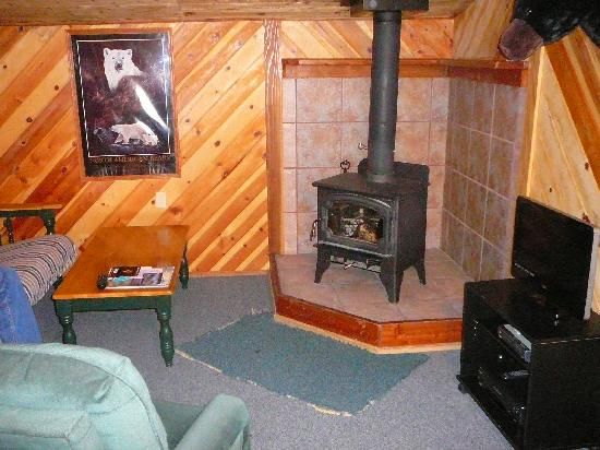 June Lake Pines: Nice cozy fire and flat screen tv
