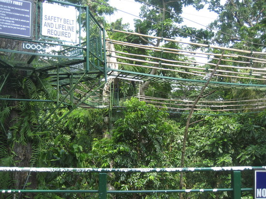 Olongapo, Philippines: Bridges. Don't look down as you cross in there.