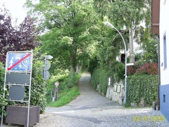 Zwingenberg, Germany: up towards Stone Wall