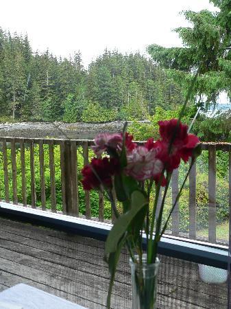 Hidden Cove Lodge: breakfast view