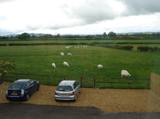 Wraxall, UK: View from upstairs landing