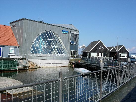 Fjord-Bæltcenter Kerteminde