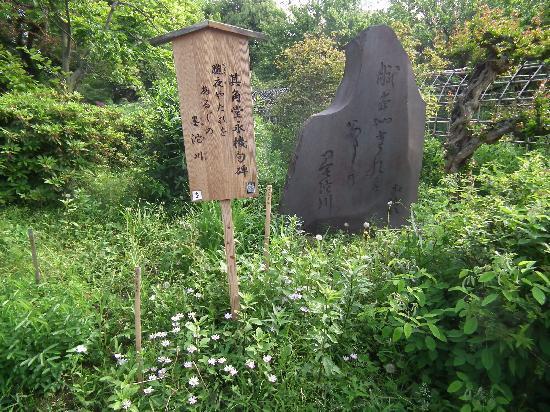Sumida, Japón: 向島百花園その1