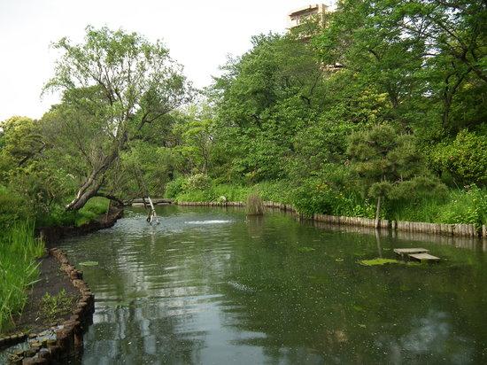 Sumida, Japão: 向島百花園その2