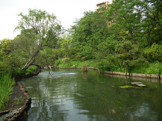 Sumida, Japan: 向島百花園その2