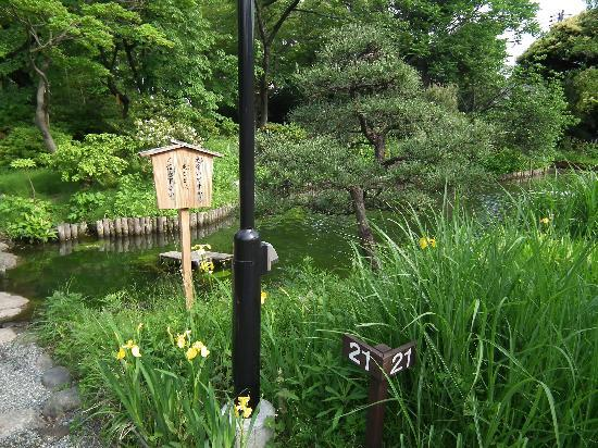 Sumida, Japón: 向島百花園その3