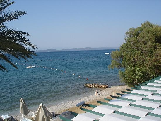 Izer Hotel & Beach Club : une vue prise au-dessus du bar