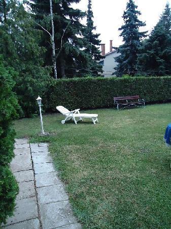 Samson Apartments: garden