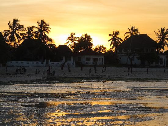 Red Monkey Beach Lodge: Sunset at the Red Monkey