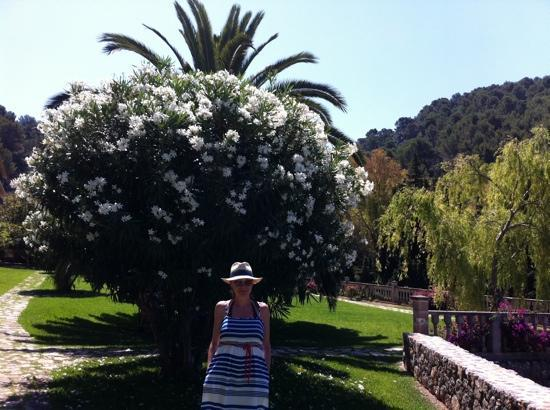 Es Port Hotel: blossom girl