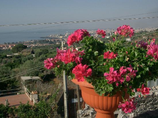 Parco degli Ulivi: Vista di Catania dalla terrazza