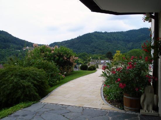 Hotel Anna Badenweiler: vu sur le jardin