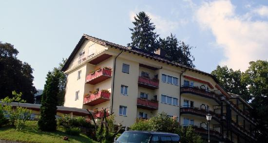 Hotel Anna Badenweiler: vu d'hôtel
