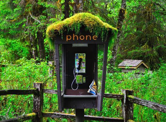 Téléphone d'Eyrún Phone-booth-at-the-hoh